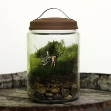 <strong>Twig Terrariums</strong> Boobies Desk Top Plant in Terrarium