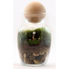 Gentle Reminder Assembled Terrarium