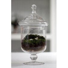 Grazed and Confused Assembled Terrarium