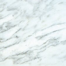 "SAMPLE - 24"" x 12"" Polished Marble Tile in Arabescato Carrara"