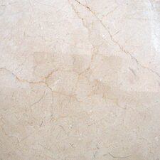 "SAMPLE - 12"" x 12"" Polished Marble Tile in Crema Marfil"