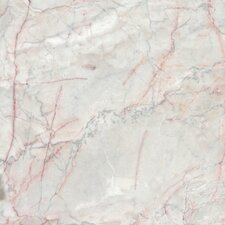 "12"" x 12"" Polished Marble Tile in Pewter Rosa"
