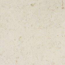 "12"" x 12"" Polished Limestone Tile in Jerusalem Bone"
