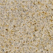 "18"" x 18"" Polished Granite Tile in Giallo Fantasia"