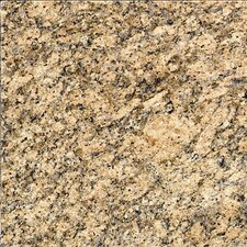 "18"" x 18"" Polished Granite Tile in Giallo Veneziano"