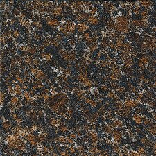"12"" x 12"" Polished Granite Tile in Tan Brown"