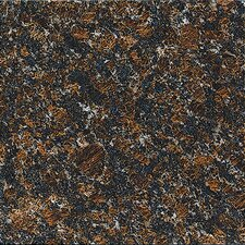 "18"" x 18"" Polished Granite Tile in Tan Brown"