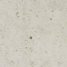 "12"" x 12"" Honed Limestone in Gascogne Beige"