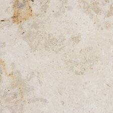 "12"" x 12"" Polished Limestone Tile in Jura Beige"