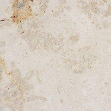 """12"""" x 12"""" Polished Limestone Tile in Jura Beige"""