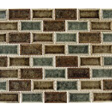 "Fossil Canyon 2"" x 1"" Glass Blend Mesh Mounted Mosaic Tile in Multi"