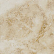 "Pietra Cappuccino 18"" x 18"" Porcelain Polished Floor and Wall Tile in High Gloss"
