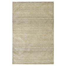 Nyla Slate / Light Gold Rug
