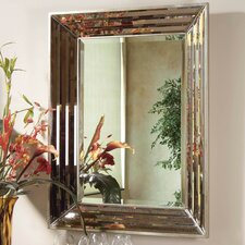 "40"" H x 30"" W Jewels Wall Mirror"