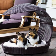 <strong>The Refined Canine</strong> Outdoor Dog Chaise Lounge