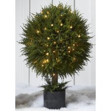 Lighted Cypress Orb Round Topiary in Pot