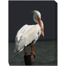 Pelican On Post Outdoor Canvas Art