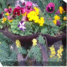 Pansies and Posies Photographic Print on Canvas