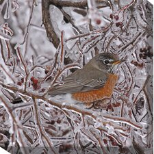 Robin in Ice Art Painting