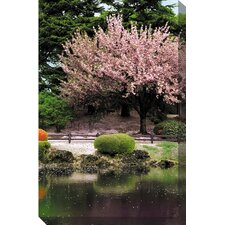 Cherry Blossom Pond Photographic Print on Canvas