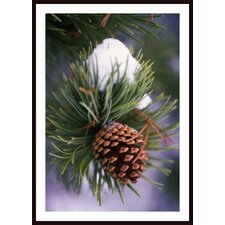 Early Snow On Pine Tree Branch With Pinecone Wall Art by Craig Tuttle