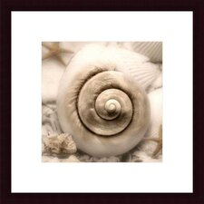 <strong>Barewalls</strong> Iridescent Seashell I by Donna Geissler Wood Framed Art Print