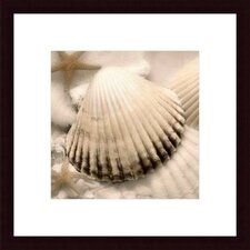 <strong>Barewalls</strong> Iridescent Seashell II by Donna Geissler Wood Framed Art Print