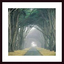 <strong>Barewalls</strong> Corridor of Cypress by E. Loren Soderberg Wood Framed Art Print