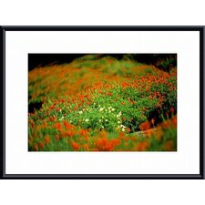<strong>Barewalls</strong> White Poppies Metal Framed Art Print
