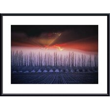 <strong>Barewalls</strong> Winter Sunset Metal Framed Art Print