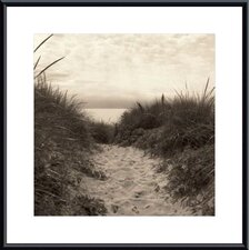 <strong>Barewalls</strong> Dune Path Metal Framed Art Print