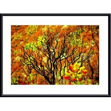 <strong>Barewalls</strong> Charred Tree Metal Framed Art Print