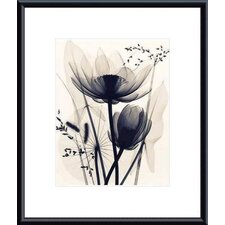 <strong>Barewalls</strong> Lotus and Grasses by Judith McMillan Metal Framed Art Print