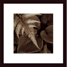 <strong>Barewalls</strong> Painted Ferns I Wood Framed Art Print