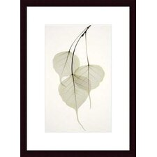 <strong>Barewalls</strong> Bo Tree by Albert Koetsier Wood Framed Art Print