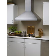 Euroline Series Model Wall Mount Hood with Straight Lip