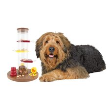 Gambling Tower Dog Activity Game