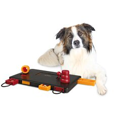 Move-Two-Win Dog Activity Game