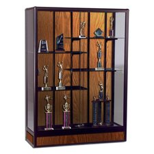 "Display Case, Freestanding, 72""x18""x66"", Oak"