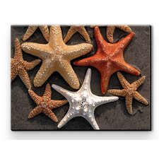 I Sea Life Starfish Canvas Art