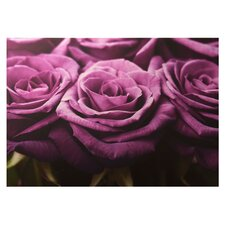 Plum Roses Row Canvas Art
