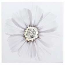 Metallic X Ray Floral Canvas Art