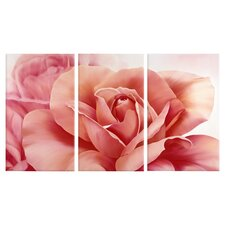 Home Décor Pretty Flower Triptych Wall Art