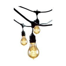 15 Light Outdoor String Light with Vintage Edison Bulbs