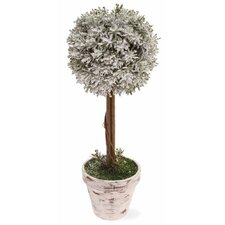 """14"""" Ball Topiary in Pot Home Accent"""