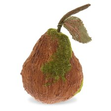"7"" Moss Pear Home Accent"