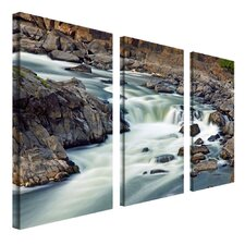 A Treasure by Cat Eyes 3 Piece Photographic Print on Canvas Set