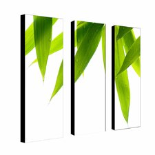 "<strong>Trademark Global</strong> Life is Green by Philippe Sainte-Laudy, Canvas Art  (A 3 Piece Set) -24"" x 8"" x 2"""