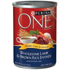 Wholesome Lamb / Brown Rice Wet Dog Food (13-oz, case of 12)