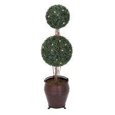 Double Boxwood Ball Tree
